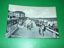 Cartolina Bellaria - Lungomare 1955 - Rimini