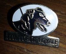 Pin's  CHIEN   ELEVAGE DE LA FORET ROYALE   Le Gros Theil , Eure    P8+ - Other