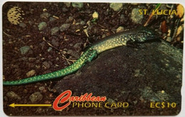 St Lucia Phonecard EC$10 Whip Tail Lizard 201CSLA - Saint Lucia