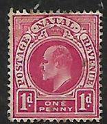 S.Africa: Natal, Edward VII, 1d, MH * - Afrique Du Sud (...-1961)