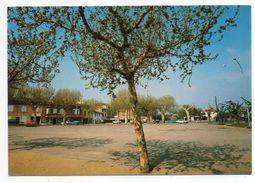 BEAUVALLON--1984--Place Du Marché -- - Andere Gemeenten
