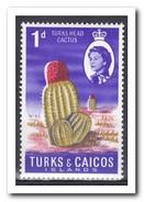 Turks & Caicos ?, Postfris MNH, Cacti - Turks And Caicos