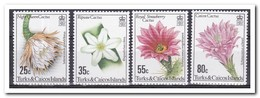 Turks & Caicos 1981, Postfris MNH, Flowers - Turks- En Caicoseilanden