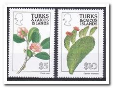 Turks & Caicos 1990, Postfris MNH, Flowers, Cacti - Turks- En Caicoseilanden