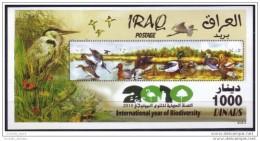 Iraq 2010 MNH - International Year Of Biodiversity - Bird - Duck - Fauna - Butterfly - Ladybug - Insects - S/S M/S Block - Irak