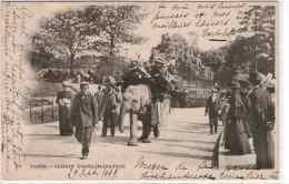 PARIS - LOT DE 20 CPA - LUNA PARK - JARDIN DES PLANTES & ACCLIMATATION + DIVERS - Ansichtskarten