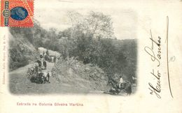 Estrada Na Colonia Silveira Martins (000656) - Brésil