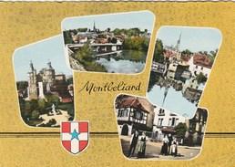 MONTBELIARD LE CHATEAU PONT ARMAND BERMONT L ALLAN - Montbéliard