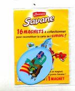 Magnet Savane  Europe Islande Dakkar - Tourism