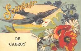 08 - ARDENNES / Fantaisie Moderne - CPM - Format 9 X 14 Cm - CAUROY - France