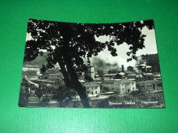 Cartolina Montoro Umbro - Panorama 1956 - Terni
