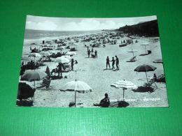 Cartolina Pineto ( Teramo ) - Spiaggia 1962 - Teramo