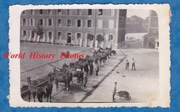 Photo Ancienne - Fort De ROSNY Sous BOIS - Chevaux & Volets Au Repos - Cheval Horse Caserne - War, Military