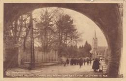 Beauraing, L'entrée Du Parc, L'arbre Des Apparitions (pk37040) - Beauraing