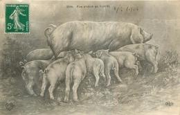 COCHONS  FIVE O'CLOCK EN FAMILLE - Cochons