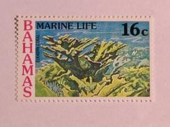 BAHAMAS  1977   LOT# 19  MARINE LIFE - Bahamas (1973-...)