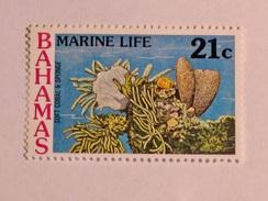BAHAMAS  1977   LOT# 20  MARINE LIFE - Bahamas (1973-...)