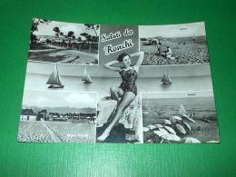 Cartolina Saluti Da Ronchi - Vedute Diverse 1965 - Massa