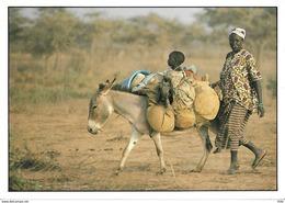 GAMBIE - Retour Du Marché - âne - Ezel - Donkey - Gambie