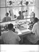 Afrique Noire SOUDAN  (A.O.F Mali) Laboratoire à BAMAKO -Planche Format  31 X 24 Cms *PRIX FIXE - Reproductions