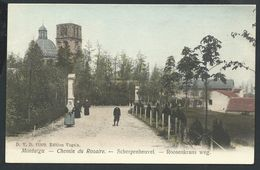 +++ CPA - MONTAIGU - SCHERPENHEUVEL - Chemin Du Rosaire - Roosenkrans Weg - D.V.D. 11802 Couleur 1905  // - Scherpenheuvel-Zichem