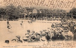 V10655 Cpa 88 Epinal - Courses Vélocipédiques 1903, A Toutes Pédales - Epinal