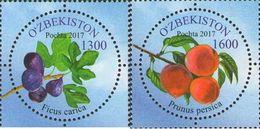 Uzbekistan 2017 Flora Fruits 2v MNH - Obst & Früchte