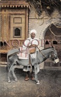 Egypte Egypt - Donkey Boy - âne - Egypte