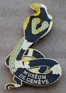 SERPENT - COBRA ROYAL - MUSEUM DE GENEVE - SUISSE  -      (JAUNE) - Animaux