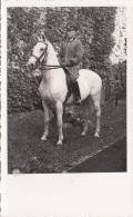 Orig.Fotokarte Um 1940, Offizier Auf Pferd, Format Ca. 13,5 X 8,5 Cm, Gute Erhaltung - 1939-45