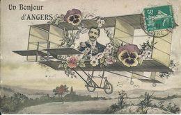 Un Bonjour D'Angers... Avion Biplan. Fleurs/pensées. - Angers