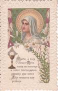 Heiligenbild - Image Pieuse - Marie, O Três Douce Mère - Souvenir De La Mission Mulhouse-Dornach - 1922 - 7*11cm (29423) - Andachtsbilder