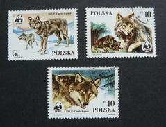 Fox Stamps - Estampillas De Lobos - Polonia - W.W.F.
