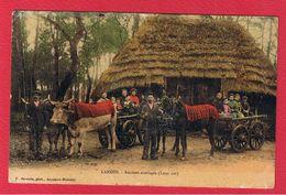 Landes  --Anciens Attelages - France