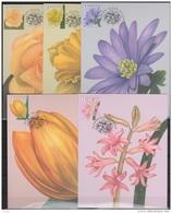 MAX Bloemen 10 Kaarten Volledig-Fleurs 10 Cartes Complete M.Meersman 2016 - Maximum Cards
