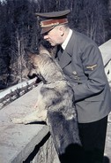 Militaria WW2  -   Adolf Hitler Et Blondi Au Berghof (1) - 1939-45
