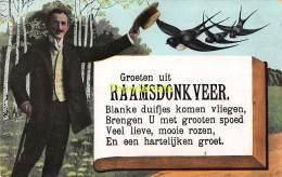 CPA  GROETEN UIT RAAMSDONKVEER - Geertruidenberg