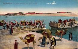 Egypte Egypt - Kantara - Camels Passing The Suez Canal - Chameaux Traversant Le Canal De Suez - Egypte