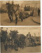 Dockers Transporteur Au Port Anvers Belgique Attelage Chevaux De Corporations 2 Cartes - Professions
