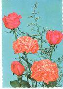 POSTAL       ROSAS Y CLAVELES - Flores