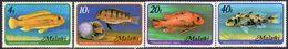 Malawi 1977 Fish Set Of 4, No Watermark, MNH, SG 552A/5A (BA2) - Malawi (1964-...)