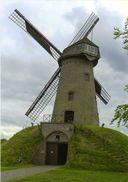 WIPPELGEM - Evergem (Oost-Vlaanderen) - Molen/moulin - De Gerardsmolen In 2014, Opgezeild En In Werking - Evergem