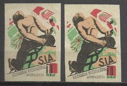 5631-2 VIÑETAS GUERRA CIVIL ESPAÑA S.I.A,VIARIEDAD COLOR DESPLAZADO SOLIDARIDAD INTERNACIONAL ANTIFASCISTA,VEA CIFRAS 10 - Spanish Civil War Labels