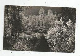 Cp , 25 , VUILLAFANS , Symphonie Automnale , Voyagée 1947 , Coll. : M. Rey , Photo M. Colin - Francia