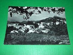 Cartolina Asolo ( Treviso ) - Panorama 1960 - Treviso