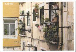LISBOA - Castelo - Détail D'un Des Plus Anciens Quartiers - Lisboa