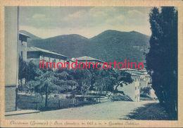 Ah579 - Arcidosso - Grosseto - Giardini Pubblici - Grosseto