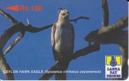 TARJETA DE SRI LANKA DE UN AGUILA  (BIRD-PAJARO-EAGLE) - Sri Lanka (Ceylon)