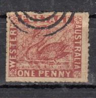 Western Australie Occidentale  YT N°9 1p  Dentelure Fine - 1854-1912 Western Australia