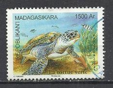 MADAGASCAR 2014 - GREEN TURTLE - OBLITERE USED GESTEMPELT USADO - Tortues